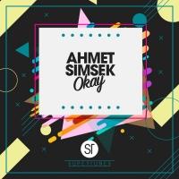 Ahmet Simsek Okay