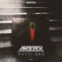 Anderex Gucci Bag