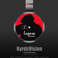 Tomasz Wakulewski ByrdsVision