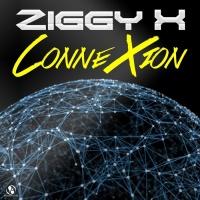 Ziggy X Connexion