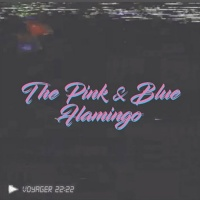 Voyager 22 22 The Pink & Blue Flamingo