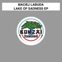 Maciej Labuda Lake Of Sadness EP