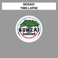 Mosaic Time.Lapse