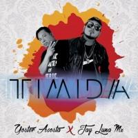 Jay Luna Mx Feat Yoster Acosta Timida