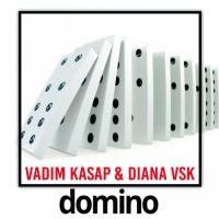 Vadim Kasap, Diana Vsk Domino