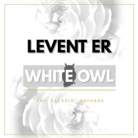 Levent Er White Owl