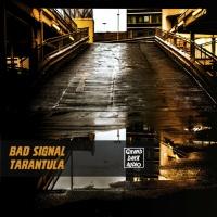 Bad Signal Tarantula