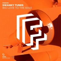 Swanky Tunes Big Love To The Bass
