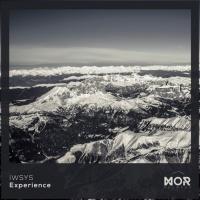 Iwsys Experience