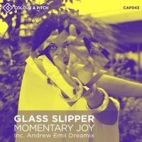 Glass Slipper Momentary Joy