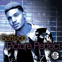 Gattison Picture Perfect