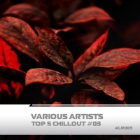 Veky, Amind Two Guys, Luorchestra, Andy Lime Top 5 Chillout #3