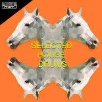 Hombres Buenos Hacen Deep, Simsoneria Swing, Detroit 95 Drums, Jason Rivas, Cellos Balearica Selected House Drums