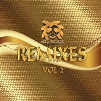 Jinx, Vinyl Junkie, Sanxion, Dj Westy Asbo Remxes Vol 2