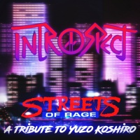 Introspect Streets Of Rage