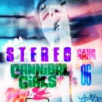 Roboy Stereo Gang 06