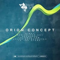 Orion Concept Birdy