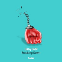 Dany Bpm Breaking Down