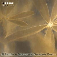 Si Firmin Nocturnal Grooves