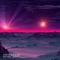 Dan Heale & Z-f Never Leave
