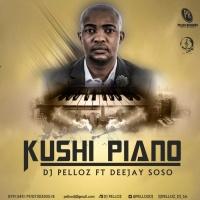 Dj Pelloz Kushi Piano