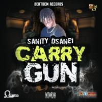 Sanity Dsane1 Carry Gun