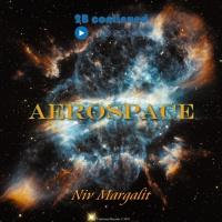 Niv Margalit Aerospace