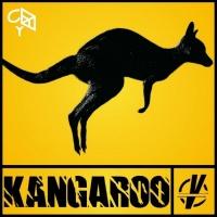Vector Kangaroo