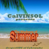 Calvinsol The Madness Of Summer