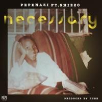 Pepenazi Feat Shizzo Necessary