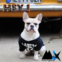 Trackin\'themix Hey!