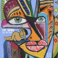 Cut Snake Set Me Free EP