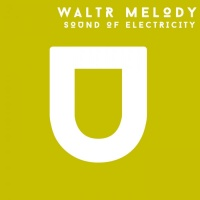 Waltr Melody Sound Of Electricity