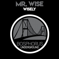Mr Wise Wisely