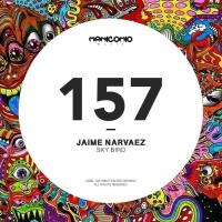Jaime Narvaez Sky Bird