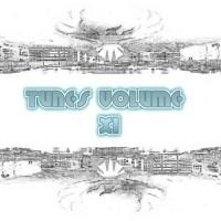 VA Tunes Volume XI