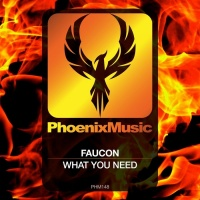 Faucon What You Need