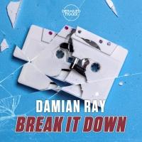 Damian Ray Break It Down