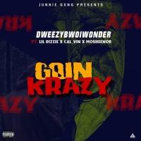 Dweezybwoi Wonder Feat Lil Dizzie, Calvin & Mosheenor Goin Krazy