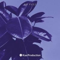 Mr Fuzz Goldy Heart