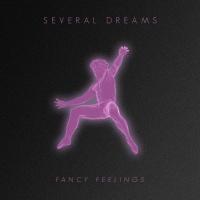 Fancy Feelings Several Dreams