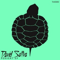 David Sattva Pervert EP