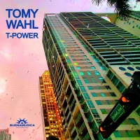 Tomy Wahl T-Power