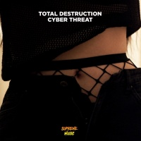 Total Destruction Cyber Threat