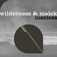 Wilderness & Malek Loseless