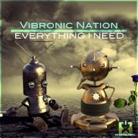 Vibronic Nation Feat Debbiah Everything I Need