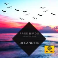 Orlandino Free Birds