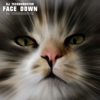 Dj Technodoctor Face Down
