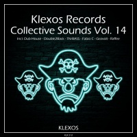 Dub House Project, Double2back, Fabio C, Gezvolt, Raffee Collective Sounds Vol 14