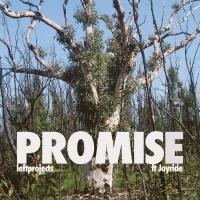 Leftprojects Feat Joyride Promise